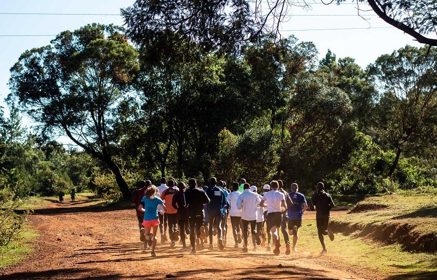 planmaraton2.jpg